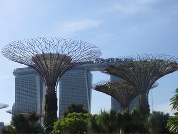 シンガポール31