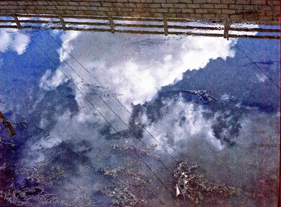 藻と空と堤防
