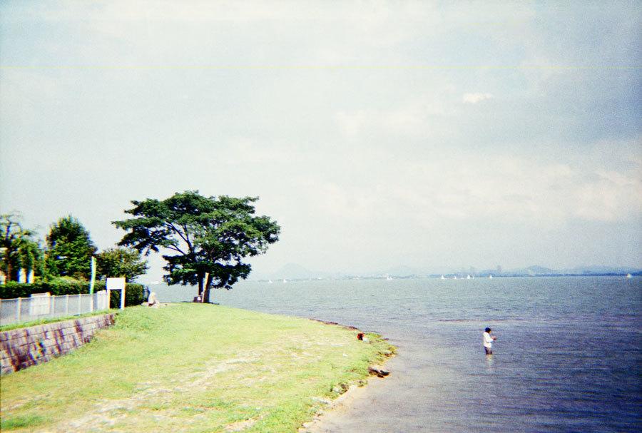 夏ののどかな湖