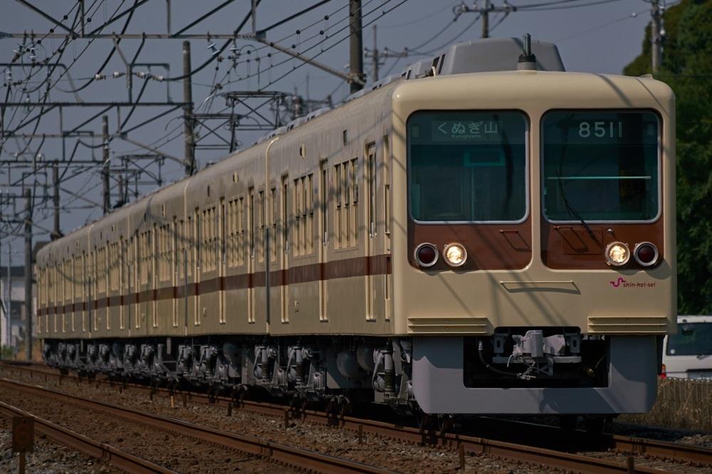 DSC01205.jpg
