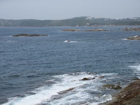 5 椿温泉の手前から白浜の南部方面