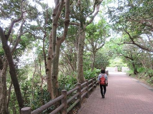10 潮岬への道