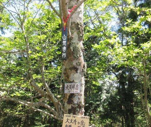 11 山想遊行の碑