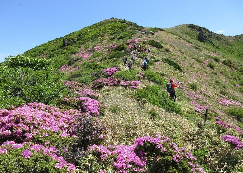 12 星生山の登山ルート