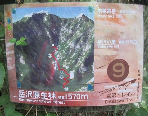10 岳沢登山道の標識