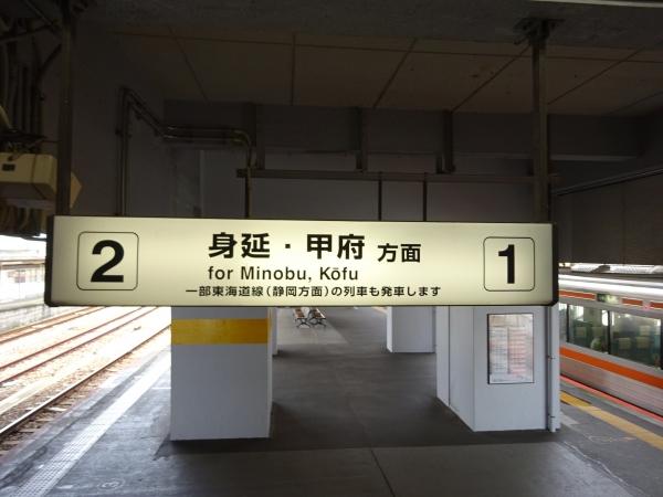 DSC08595.jpg