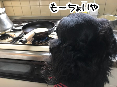 20170609ど-3
