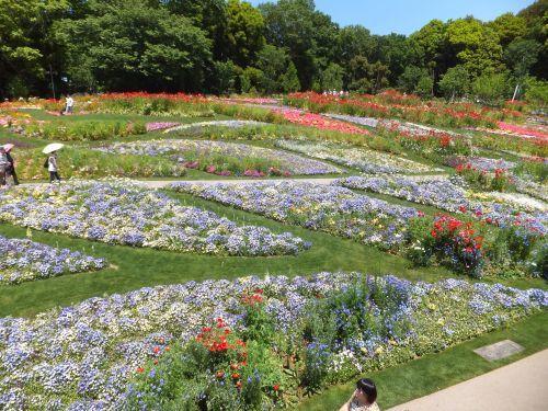里山ガーデン3
