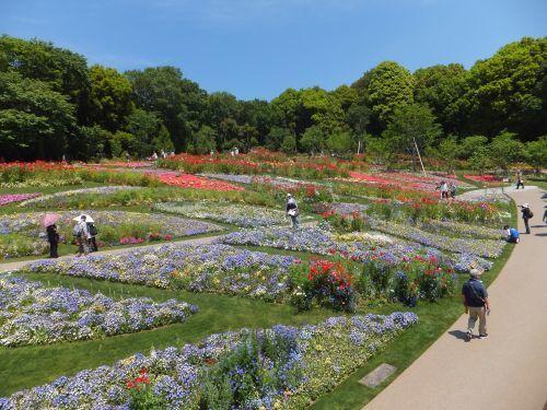 里山ガーデン4