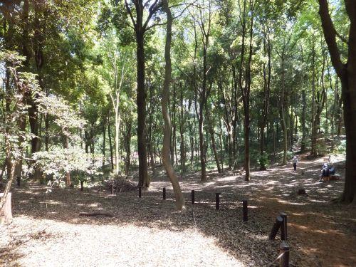 里山ガーデン6