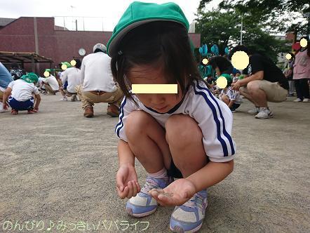 chichioyasankan201703.jpg