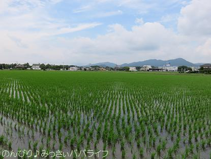 fukuoka201707023.jpg