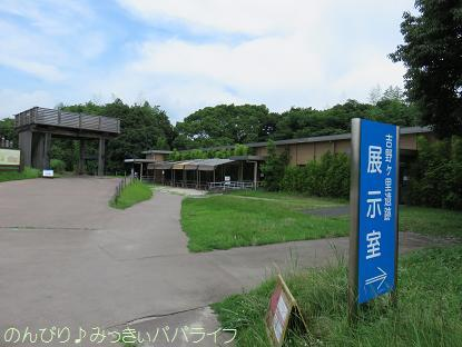 fukuoka201707027.jpg