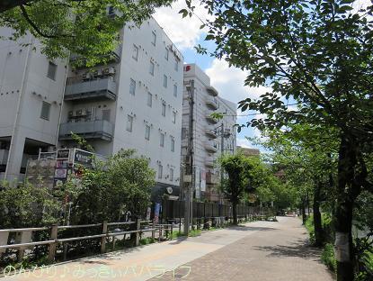 fukuoka201707087.jpg