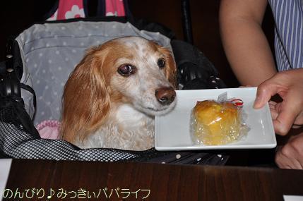 tateyama201707059.jpg
