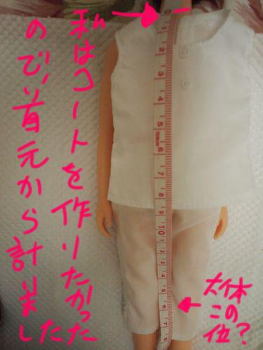 P7174627_1.jpg