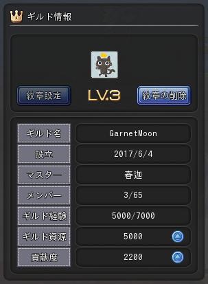 ギルド情報170608