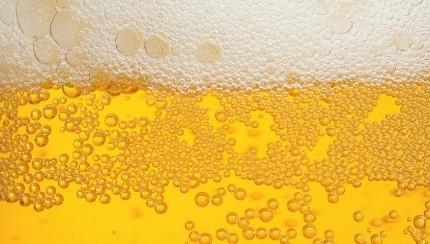 ビールkavolta