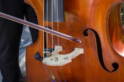 低音 楽器 コントラバス
