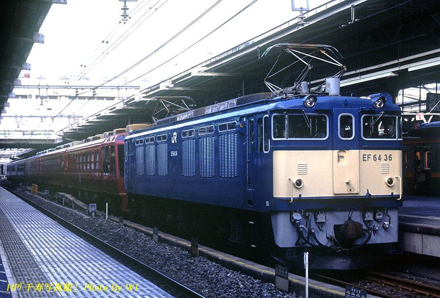 EF6436オリサル