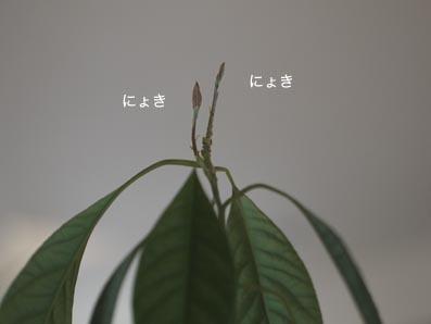 170703_4.jpg