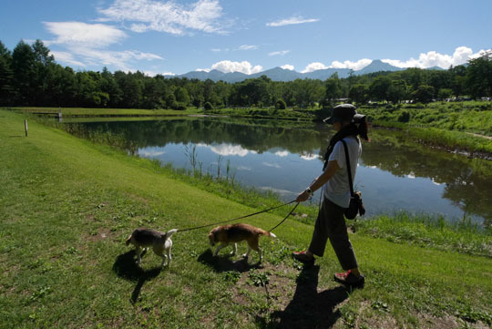 09まるやち湖散歩