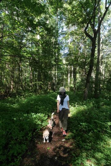 07森の小道へ