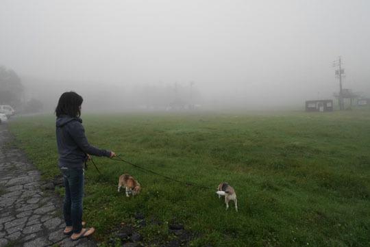 19霧の中