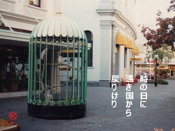 7-0630X.jpg