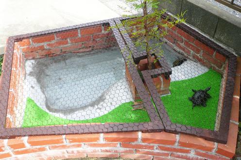 完成亀池2