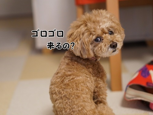 290707④