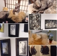 20170618怪しの猫展 ギャラリー来舎