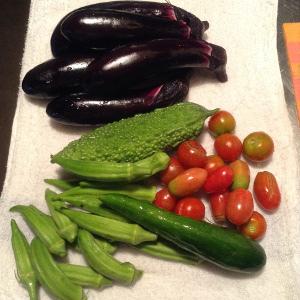 夏野菜にもかげりが
