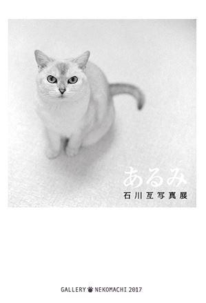 20170827あるみ 石川亙写真展 ギャラリー猫町