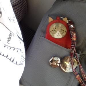 20170910の猫正装