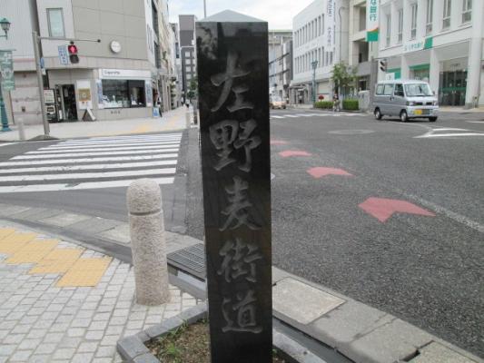 IMG_00547.jpg