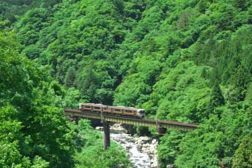 IMG_5923 (2) 正 普通列車