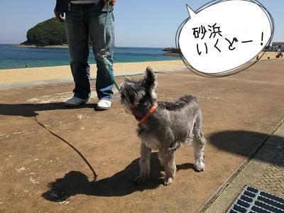 moblog_7b1f4eed.jpg