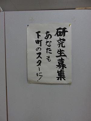 hanagiku35.jpg