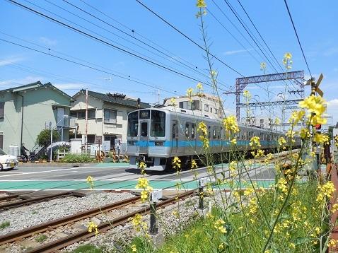 小田急江ノ島線の桜ヶ丘1号踏切@大和市e