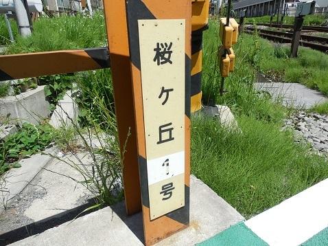 小田急江ノ島線の桜ヶ丘1号踏切@大和市b