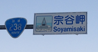 soya2.jpg
