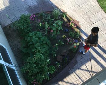 garden07071701.jpg