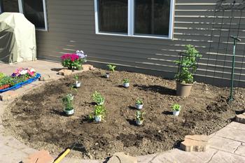 garden1704.jpg