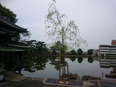 05元興寺