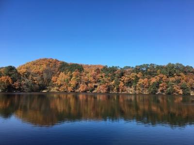 松原湖の紅葉