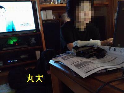 P_20170715_113340_vHDR_Auto.jpg
