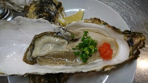 宮城産 夏牡蠣 ちちこい牡蠣