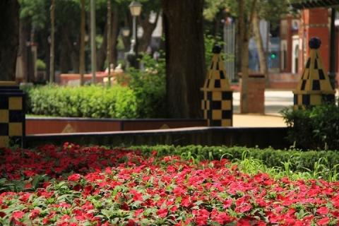 00412 Jardines del Prado