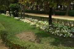 00422M Jardines del Prado